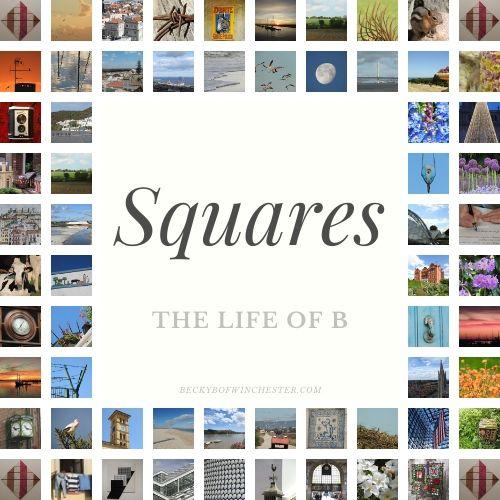 BeckyB squares logo